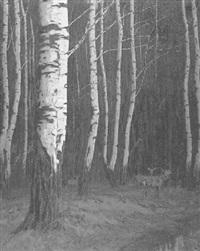 hirsch und rehe im birkenwald by willy mulot