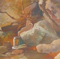 cascatella tra le rocce by federico ashton