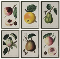 fruit (6 works) by john lindley