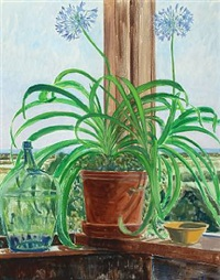 african lily on windowsill by lars swane