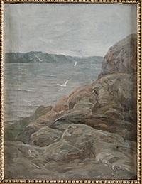 klippor vid havet by gunnar aberg