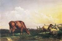 weidelandschaft mit kuh und schafen neben gatter. prachtvolle morgendliche beleuchtung by robert payton reid