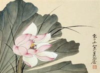 荷花 镜心 设色纸本 by liu lishang