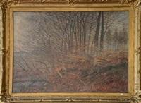 paysage de forêt by a. bastien
