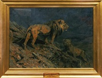 lions at midnight by arthur wardle