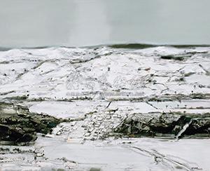 冬雪 (snow) by bai yuping