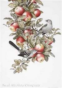 mockingbirds on an apple tree branch with fruit by axel amuchastegui