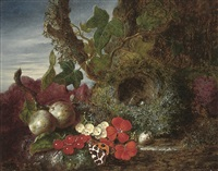 still life with fruit, flowers, butterfly and bird's nest by william h. ward