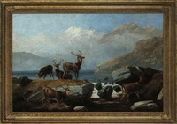 red deer by water by robert henry roe