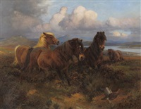 ponies grazing beside a sunlit estuary by william woodhouse