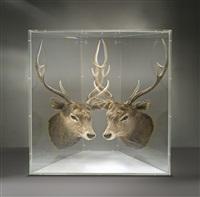 pixcell (deer) by kohei nawa