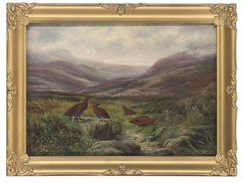 grouse in a highland landscape by ben hold