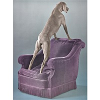 override and overview (2 works) by william wegman