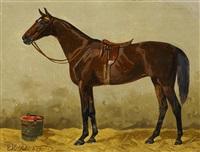 pferdeporträt im stall by emil volkers