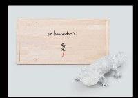 salamandar by yuki inoue