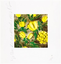 yellow roses, april by donald sultan