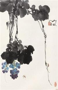 蜜蜂葡萄 by xiao lang