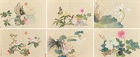 花卉册 (album of 6) by qian weicheng