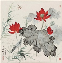 红荷 (lotus) by xu shucheng