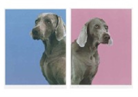 boy and girl 2 works by william wegman