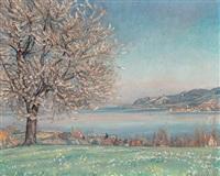 blick von der höhe mit blühendem kirschbaum auf den bodensee und gaienhofen by walter wäntig