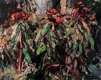 鸡冠花2012.4-2 by lin jiabing