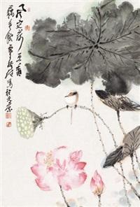 荷花翠鸟 by jia guangjian