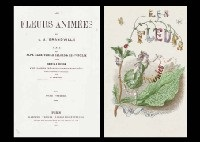 les fleurs animées (2 vols of 50 w/text by taxile delord) by jean ignace (isidore gérard) grandville