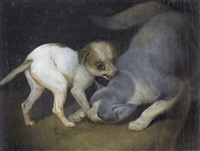 spielende katze mit einem welpen by joseph simon volmar