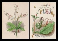 les fleurs animees (bk w/text by taxile delordin; 2 vols w/50 works) by jean ignace (isidore gérard) grandville