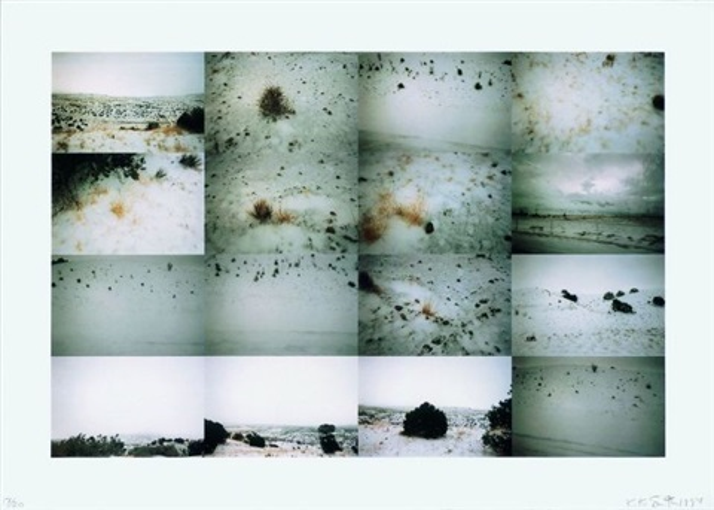untitled winterscape by kiki smith