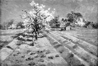 blühende kirschbäume by ernst emil renck