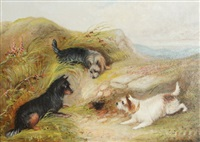 terriers hunting by george armfield