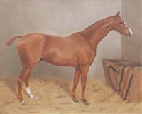 chestnut hunter in a stable by alfred grenfell haigh