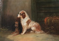 spaniel by mark william langlois
