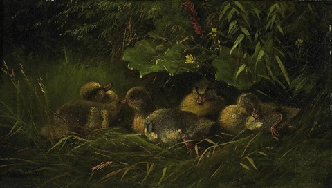 entenküken im nest by carl jutz the younger