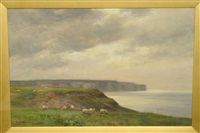 sheep grazing beside a coastline, cliffs in the distance by owen bowen