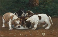 puppies at the food plate by viggo simesen