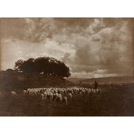 landschaft mit schafen by hugo henneberg