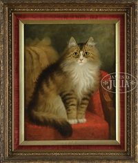 cat on a victorian chair by percy a. sanborn
