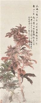 amaranth by ren yi