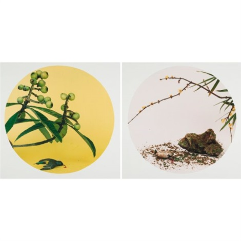 after the song dynasty painting a picture of loquats and mountain birds by zhao ji after the song dynasty painting secret fragrance and dappled shadows by ma lin 2 works by hong lei