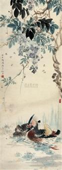紫藤鸳鸯 by bo hou