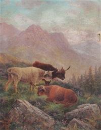 glenn rosa, arran, highland cattle by albert dunnington