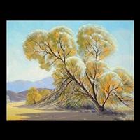 smoke trees by sam hyde harris