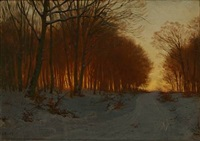 winter day in a forest with the sunset glow among the trees by ludvig kabell