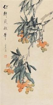枇杷 by xu gu