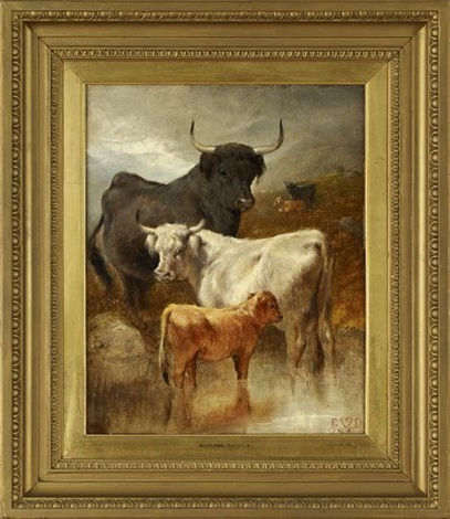highland cattle by edwin douglas