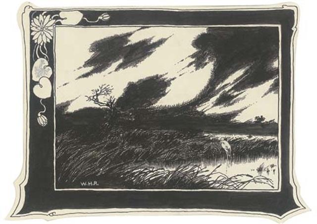 Hans Christian Andersens The Marsh Kings Daughter Illus By William Heath Robinson
