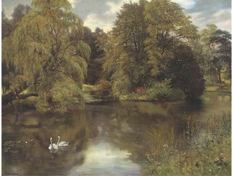 swans on a summer pond by thomas davidson
